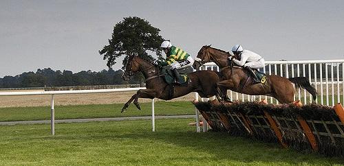 horse-race-lr